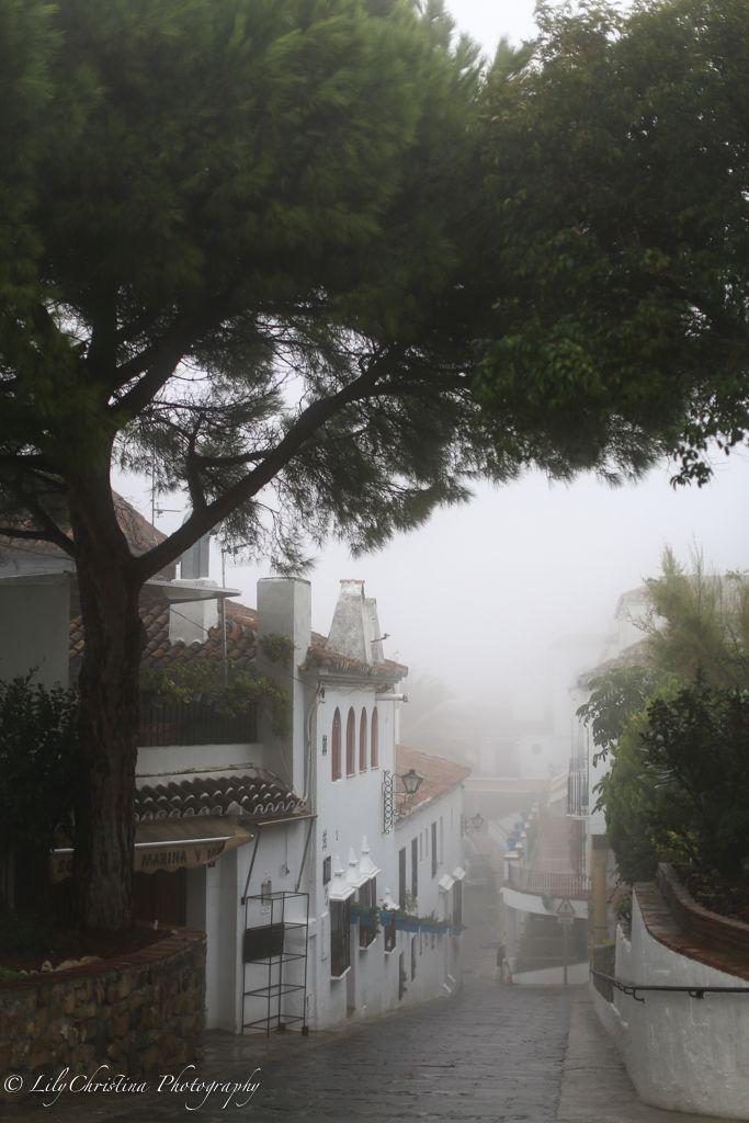 lilychristina photography, mijas, nature picture, fog, luontokuvaus, luontokuva, espanja, fuengirola