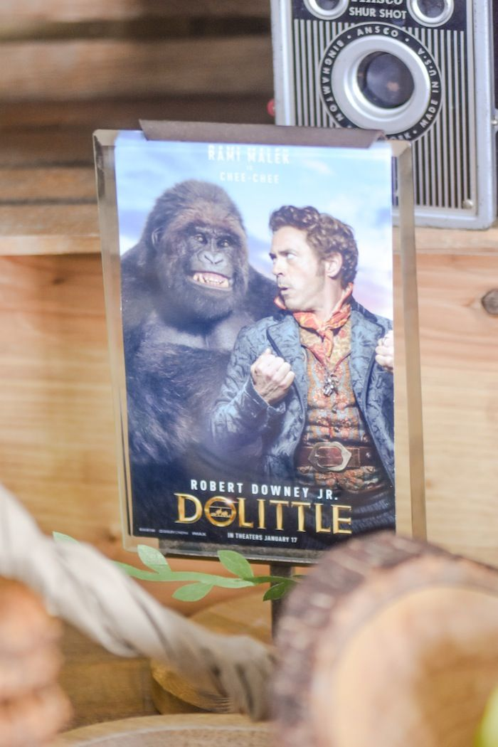 Dolittle Movie Party In 2020 Movie Party