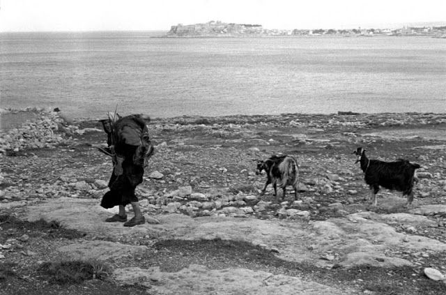 Αγρότισσα με τις κατσίκες της-Κρήτη 1955