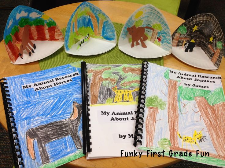 love the paper plate dioramas…for our animal research reports!