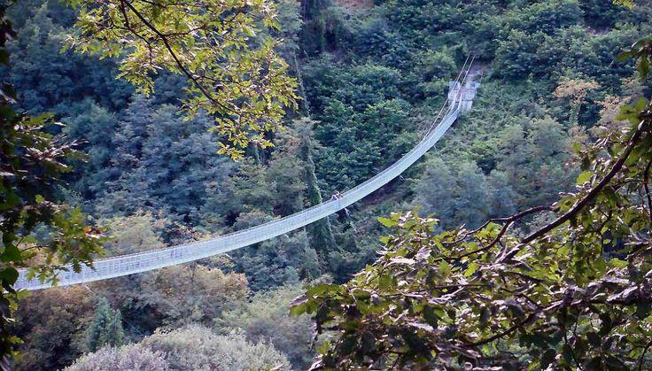 Avreste mai detto che uno dei ponti sospesi più lunghi del mondo si trova in Italia