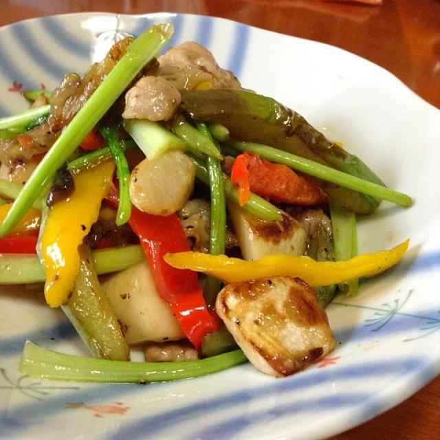 豚肉、蕪(葉っぱも)白茄子、赤黄ピーマン - 6件のもぐもぐ - 豚肉と色々野菜の塩炒め by 慎ちゃま