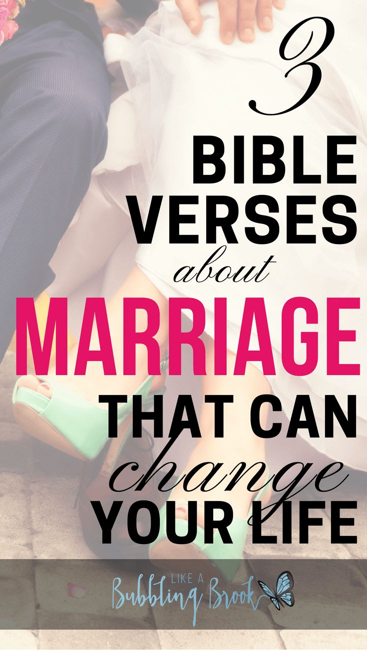 Looking for wedding readings or guidance for your marriage Read these 38 bible verses about marriage and love