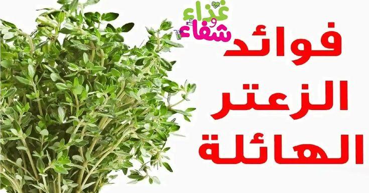 فوائد الزعتر الهائلة تغير مستقبل الطب البديل Herbs Food Medicine