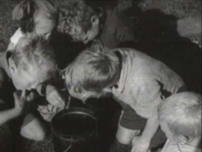 Leuk om naar te kijken dit filmpje van zomaar enkele scènes uit bijna een uur aan ruw materiaal van de fascinerende documentaire 'De Bijenwereld' die Cor Aafjes samen met imker De Meza uit Santpoort in 1925 maakte.  In de beeldcollectie van het RHCe ook foto's over imkers en bijen onder de navolgende link: http://bit.ly/2sI7OcO