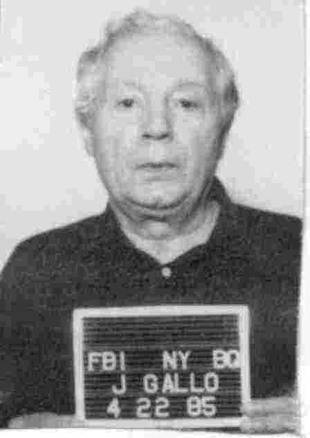 Joe gallo consigliere gambino family under paul castellano