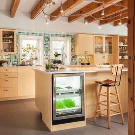 Big Kitchens Fighting Food