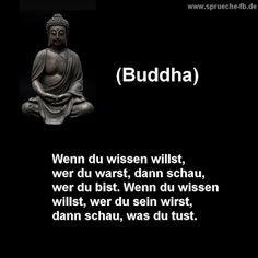 sprüche zum nachdenken buddha zitate deutsch – Mayasalaa