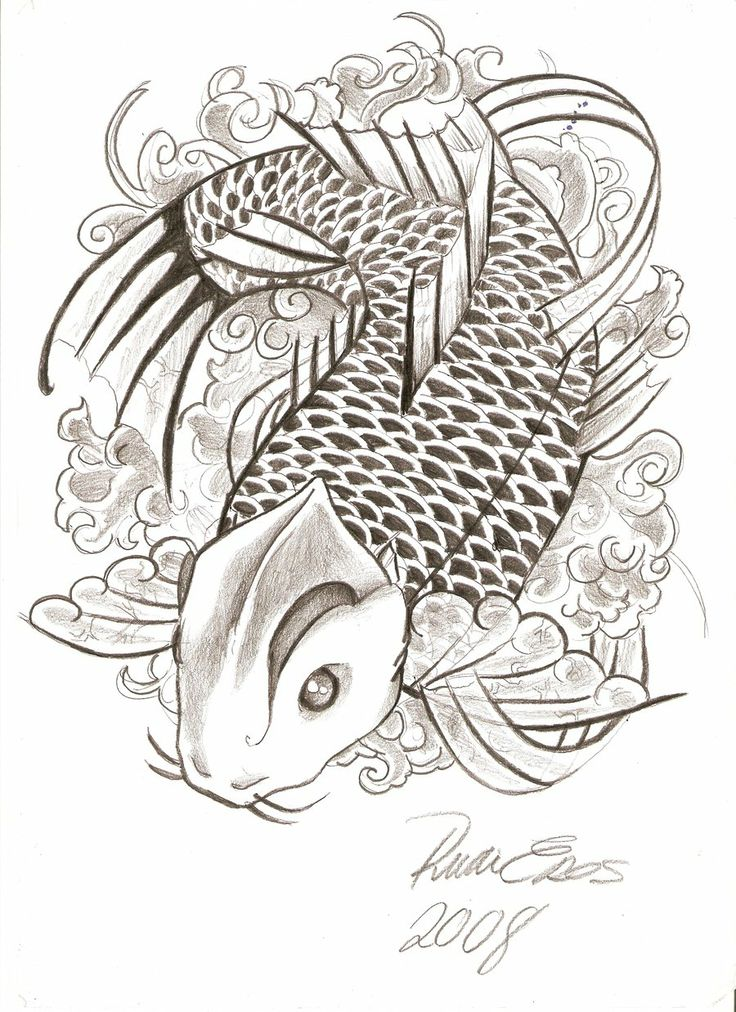 17 best images about reel girls fish on pinterest for Koi fish quotes