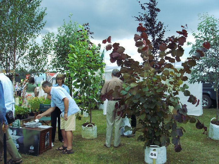 Barcham Trees at the Sandringham Flower show 2010