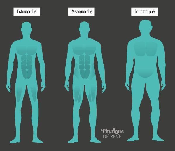 morphotype-morphologie-mensuration