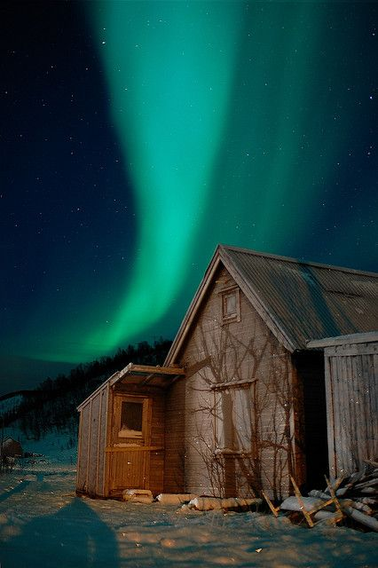 Northern Lights  Sørvik  Norway.  I want to go see this place one day. Please check out my website thanks. www.photopix.co.nz