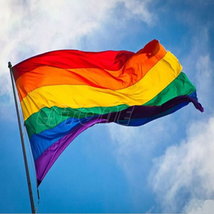 Hot Sale Rainbow Flag 3x5 FT 90x150cm Polyester Lesbian Gay Pride LGBT For Decoration -S127 >>> Click image for more details.