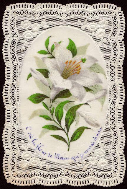 el blog del padre eduardo: Antiguas estampas de flores para María