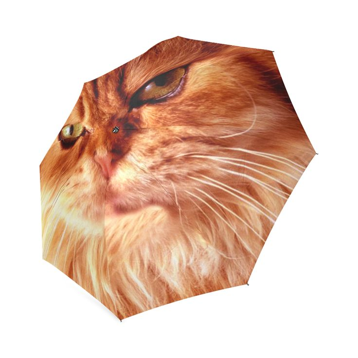 Orange Cat Foldable Umbrella. FREE Shipping.  #erikakaisersot #artsadd #umbrellas  #cats