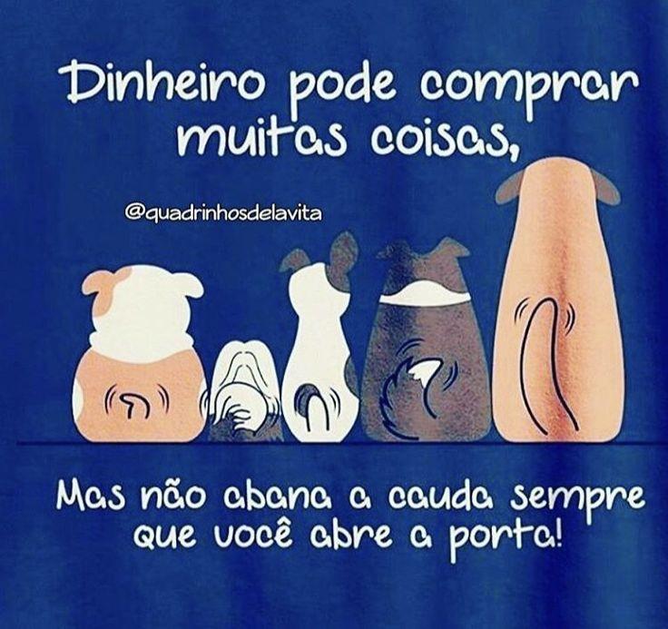 ❤️❤️❤️ #petmeupet #cachorro #paidecachorro #maedecachorro #maedepet #cachorroterapia #cachorroehtudodebom