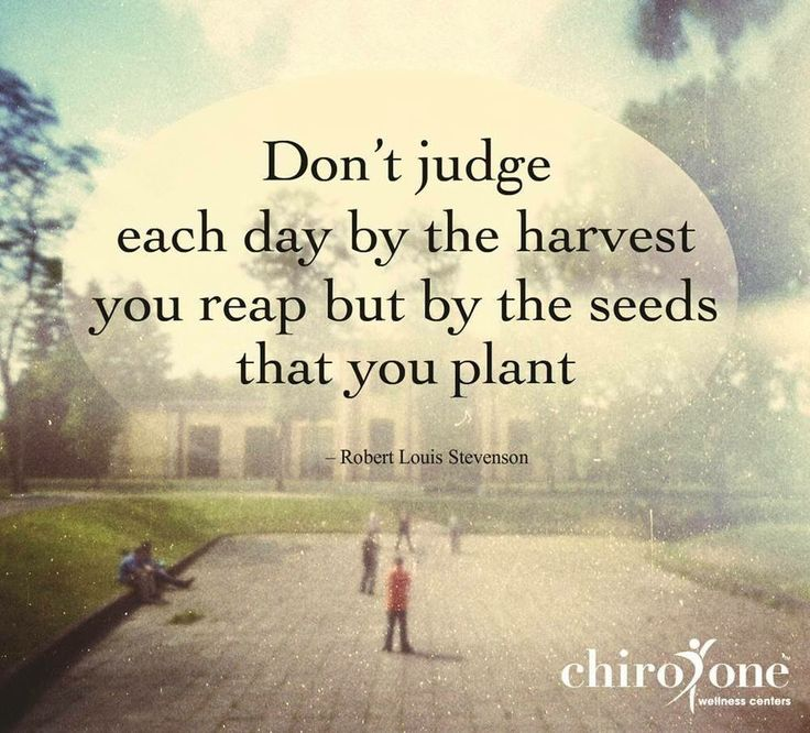 Quotes About Teachers Planting Seeds: Planting Seeds Bible Picture Quotes. QuotesGram