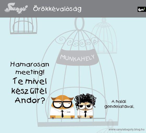 Blog   Sanyi a Bagoly - Part 2
