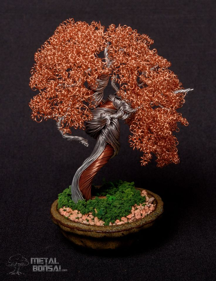 Copper and Aluminium Informal Upright with Shari and Jin. – Metal Bonsai Wire Tree Sculptures