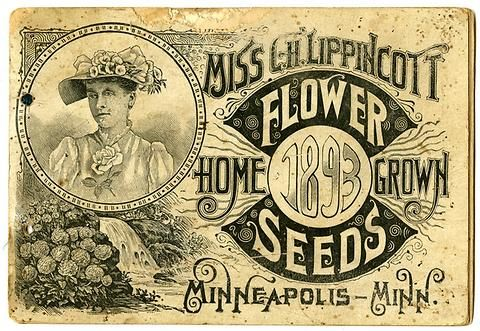 """Dated at 1893, this catalog is the earliest Carrie Lippicott catalog in Andersen Horticultural Library's collection.  There is no color on the front or back covers, and the catalog is only 28 pages.  Carrie Lippincott, the self-proclaimed """"pioneer seedswoman"""" and """"first woman in the flower seed industry"""" established her mail-order flower seed business in Minneapolis in 1891."""