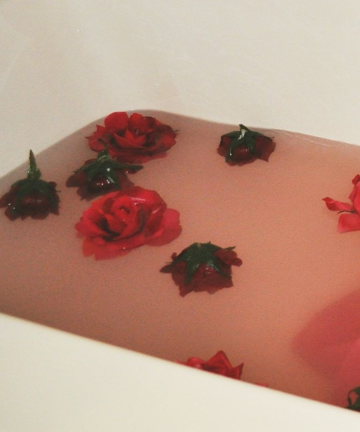 roses in the bathtub