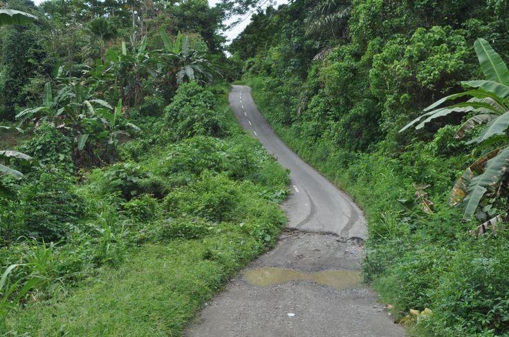 de weg vanuit Waesamu richting Nuniali. The road from Waesamu to Nuniali