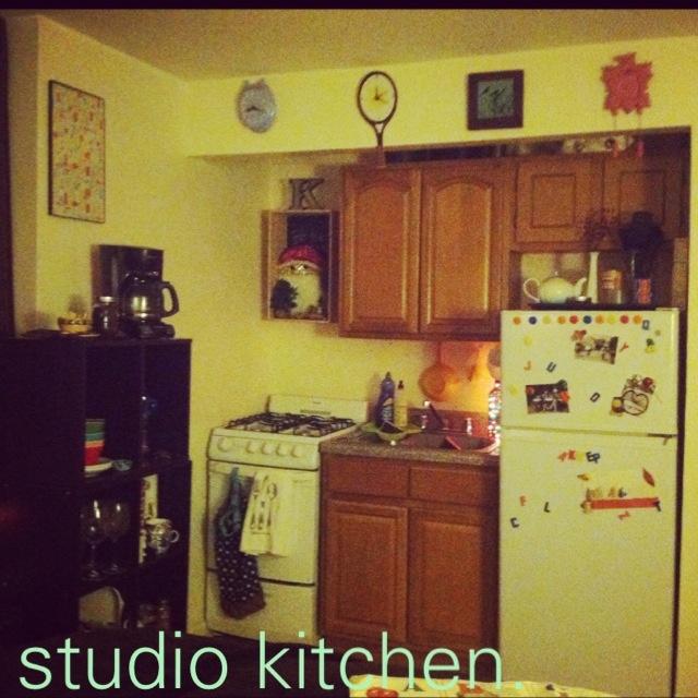 Small Studio Apartment Kitchen.