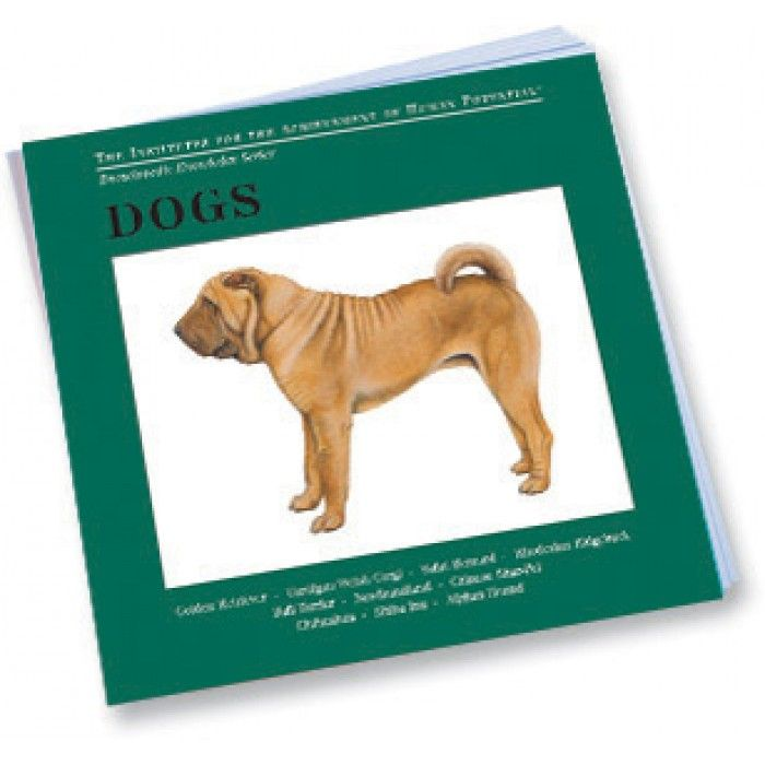 Dogs Bit of Intelligence Cards | The Gentle Revolution Press
