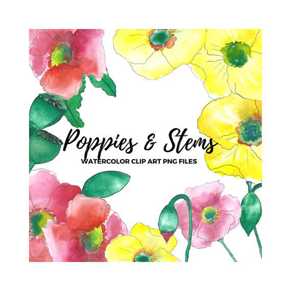 Poppies Watercolor Clip Art Digital Graphics by theartcitizen