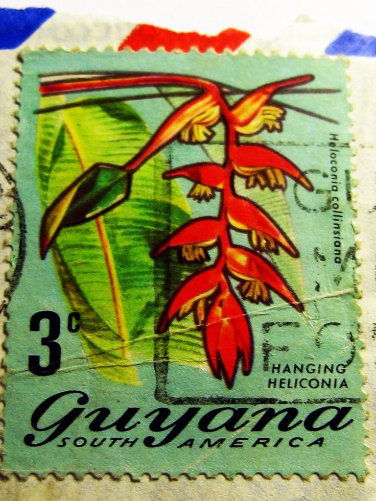 Guyana dating sites free