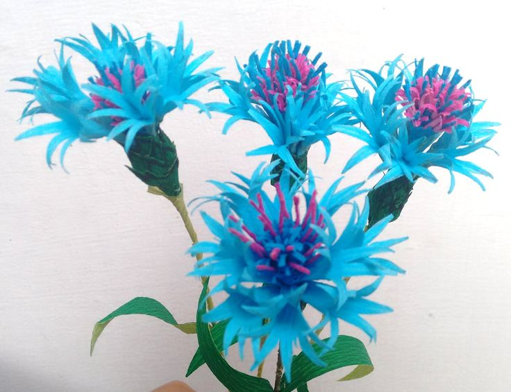 Paper flower Cornflower / Bachelor's button