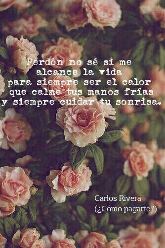 Perdón, no se si me alcance la vida para siempre ser el calor que calme tus manos frías y siempre cuidar tu sonrisa. Carlos Rivera ( canción ¿Cómo pagarte?)