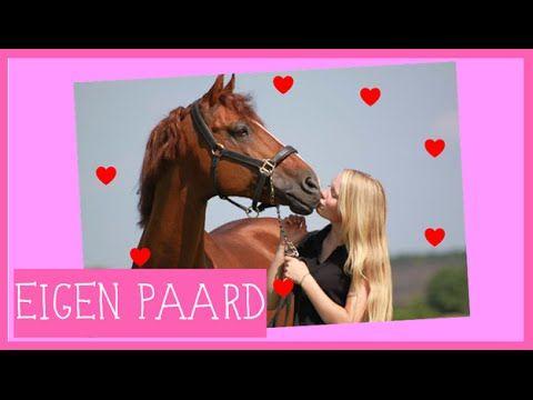 Eigen paard | Wat heb je nodig | PaardenpraatTV - YouTube