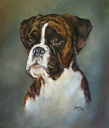 The oil painting subject is 'Bronte', the artist is Sue Harper.     (box…