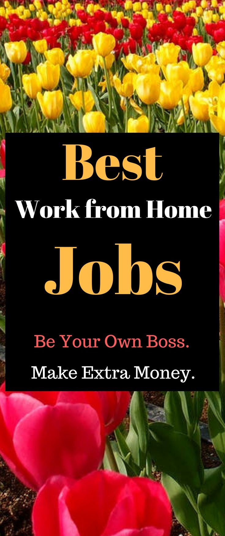 Best Work from Home Jobs – Get Paid to Test Search Engines