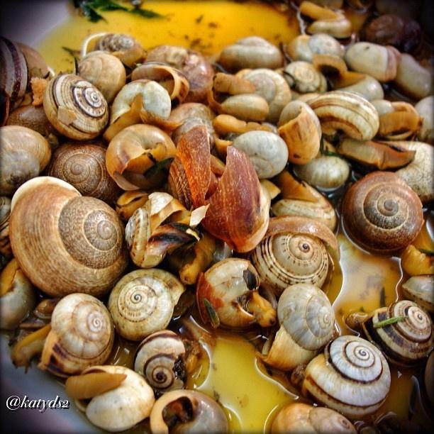 Snails Portuguese style!! Yum!!