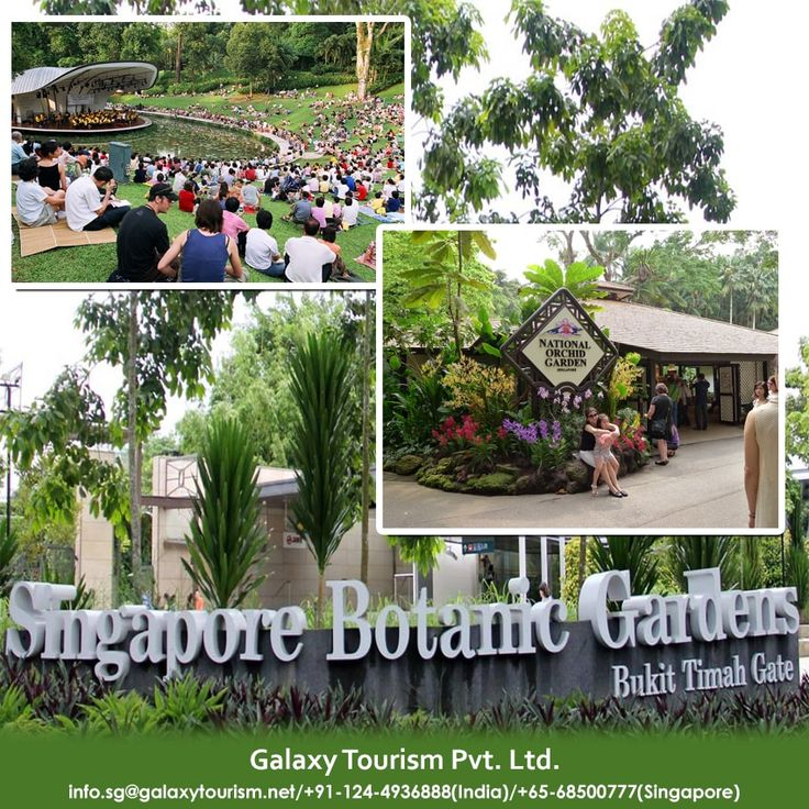 The Singapore Botanic Gardens showcases the Best and Most Spectacular of Tropical Flora set in Stunning Verdant Landscape.  Read More:- http://goo.gl/av1lCy