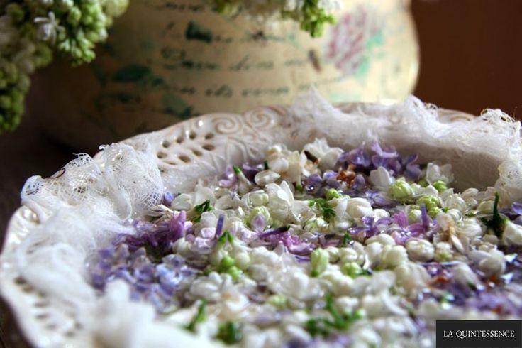 Krok po kroku: mgiełka do twarzy z kwiatów bzu.