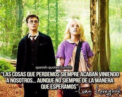 ¿A quienes les gusta Harry Potter?