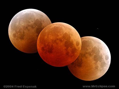 Total lunar eclipse composite image by Fred Espenak  lots going on this month! Look up!