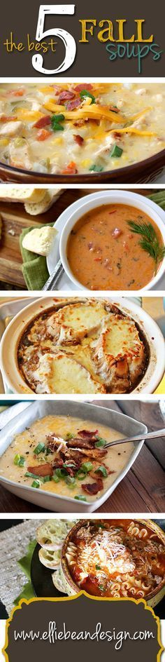 The Best 5 Fall Soup Recipes - Although I will stick with Julia Child's French Onion Soup recipe, these are great for fall, winter, or whenever you want good,hearty soup.