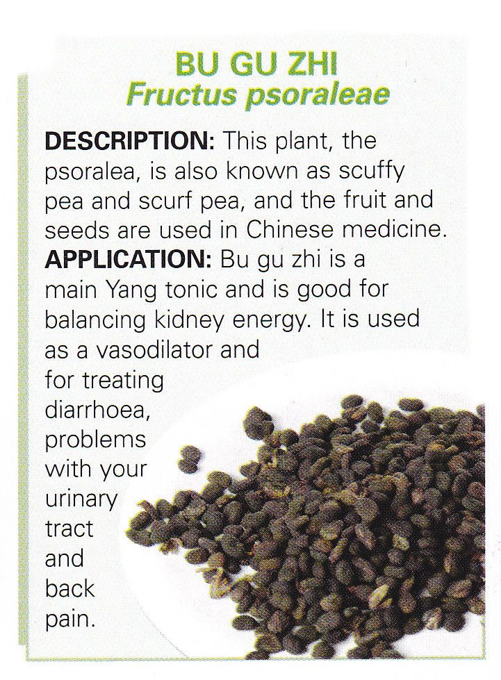 Chinese Herb - BU GU ZHI - Fructus psoraleae    Fruit and seed of scruffy pea