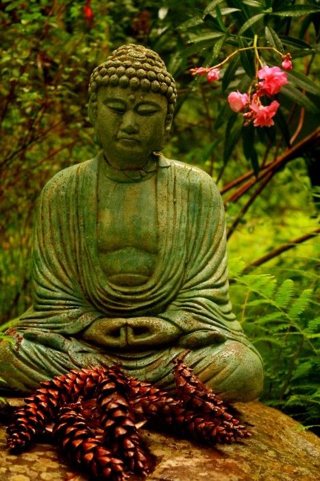 pine top buddhist personals Connect with buddhist singles who share your core values & common interests start a loving relationship on our buddhist dating website register for free.