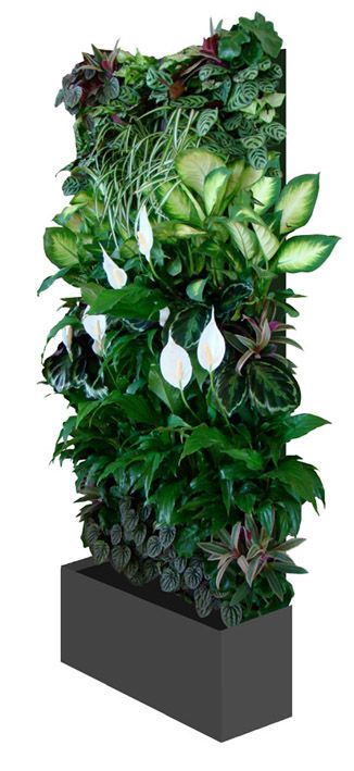 Cool - Vertiscape hydro vertical garden