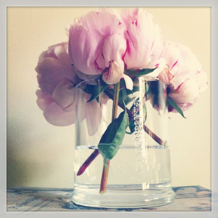 I adore the soft, feminine energy of peonies... in pink of course!