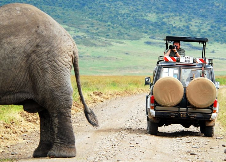 Africa Overland Tours: Zambia to Kenya | African photo safari