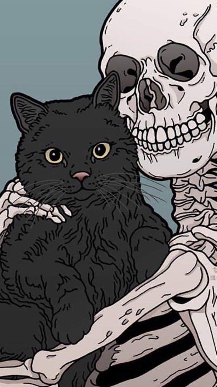 Kitty and Skeleton cats pets cute Witchy wallpaper