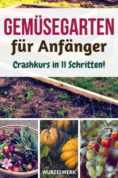 Gemüsegarten für Anfänger: Crashkurs in 11 Schritten