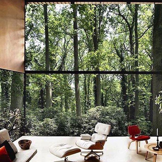 Eames Interior Design 1665 best interiors inspiration images on pinterest | eames