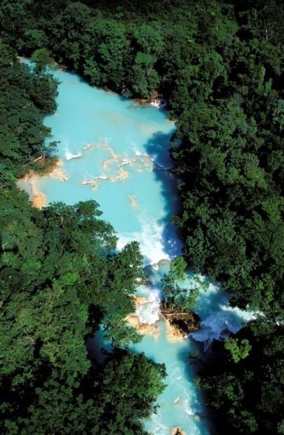 Cascadas de Agua Azul en la selva de Palenque, Chiapas (México)